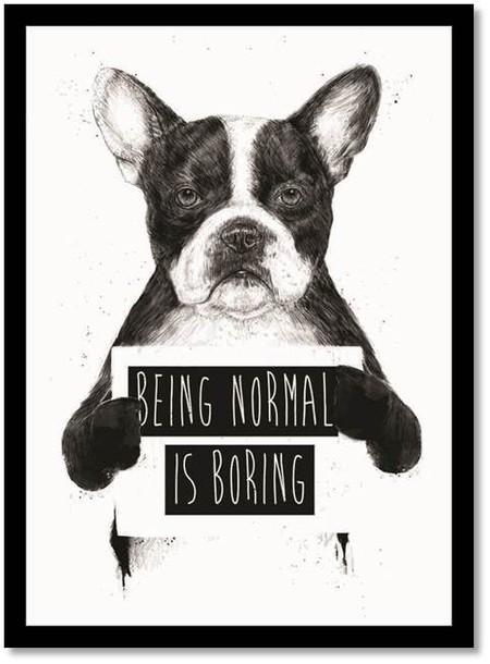Being Normal is Boring - Poster com Moldura