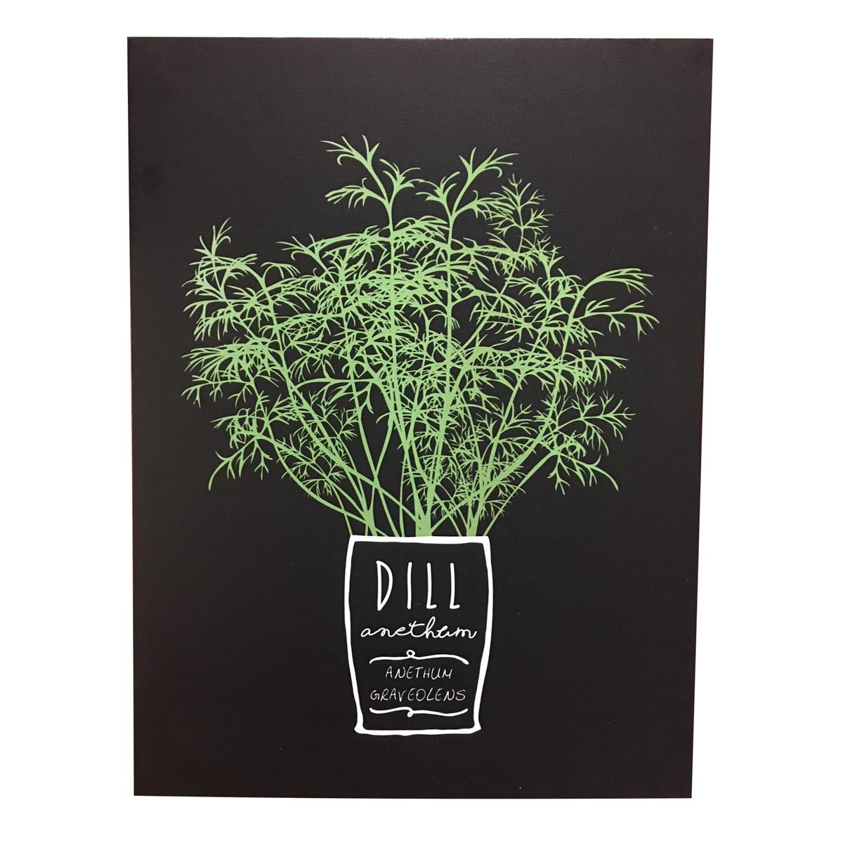 Dill Herb - Quadros