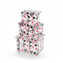 Garotas - Kit Caixas Organizadores